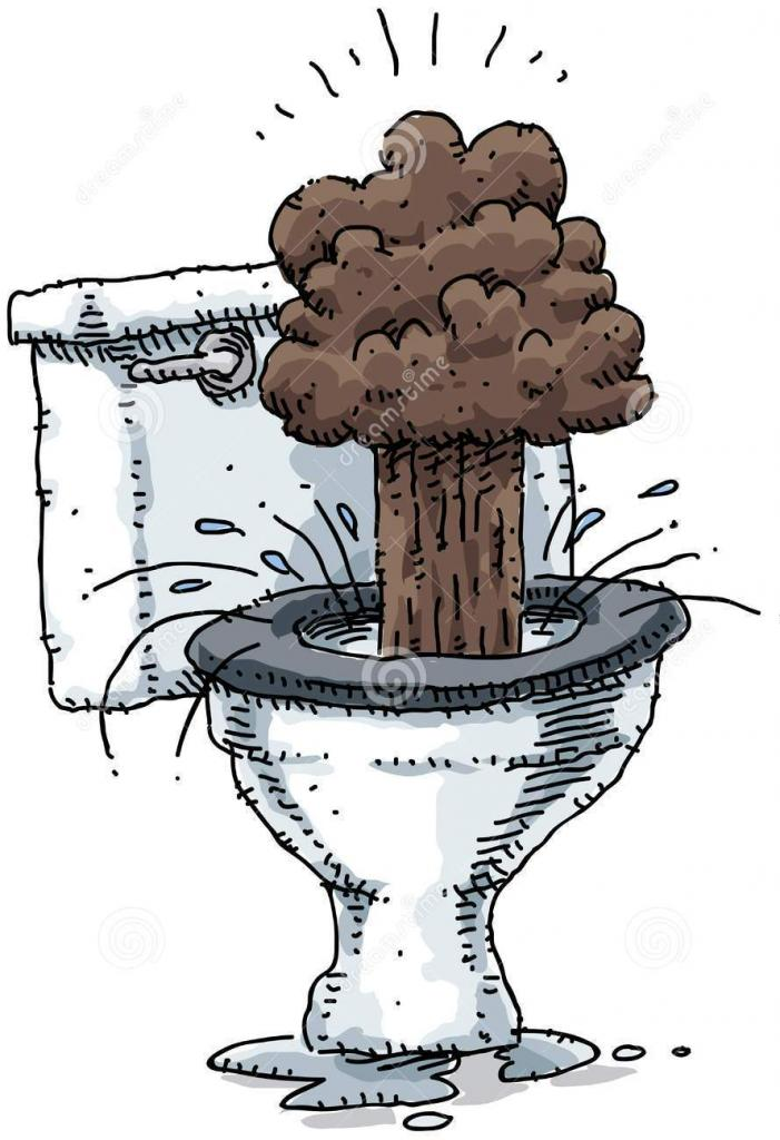 туалет-взрыва-22181468.jpg